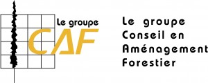 logo groupe CAF